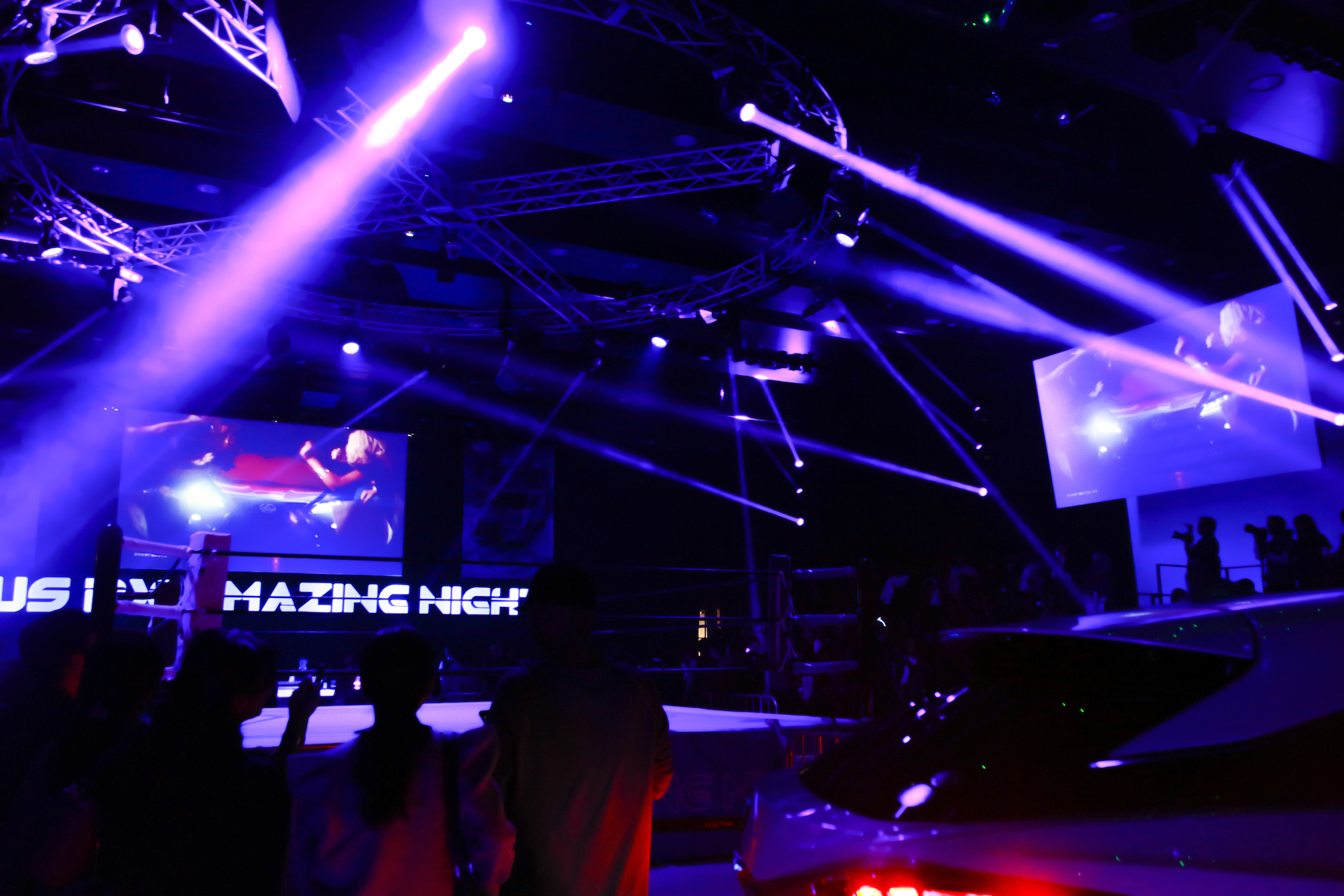 LEXUS RX AMAZING NIGHT_6